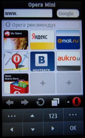 Вид браузера Opera Mini установленного в Samsung Wave 2